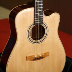 dan guitar hd300 (4)