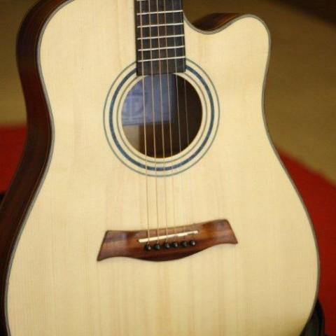 guitar-acoustic-dc100
