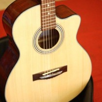 guitar-acoustic-hd101