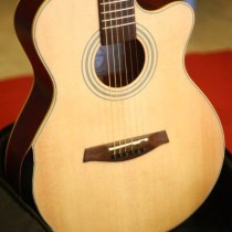 guitar-acoustic-hd301v
