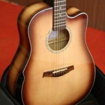 Guitar MP 101 N (6)