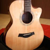 Guitar W10 (3)