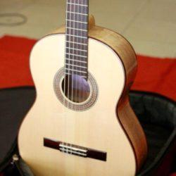 dan guitar classic cl300 (17)
