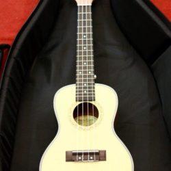 dan ukulele (23)