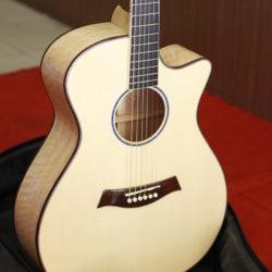 dan_guitar_cc300_7