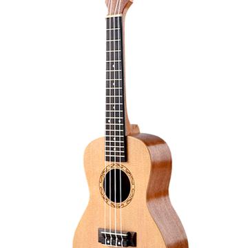 uku-der-900 (1)